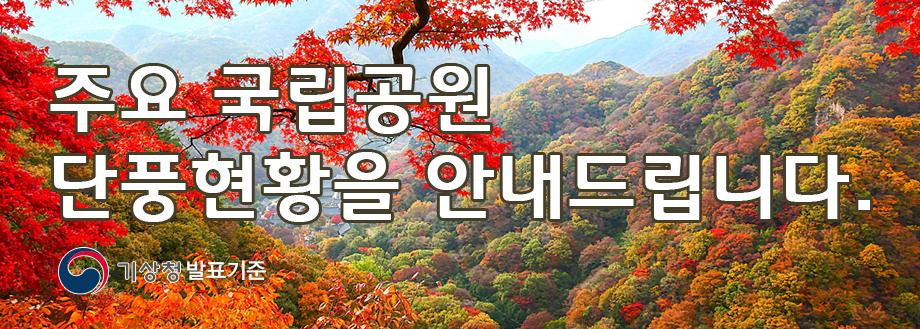 찬란한 가을, 국립공원과 함께하세요. 주요 국립공원 단풍현황을 안내드립니다. (자료 : 기상청 발표기준)
