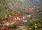 내장산의 가을단풍